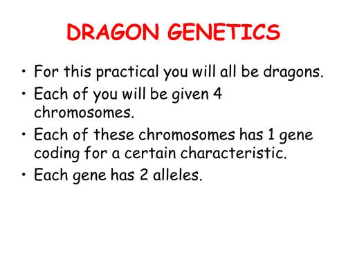 Reproduction Inheritance Dragon Genetics Activity By