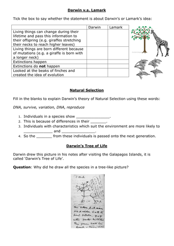 darwin vs lamarck worksheet f by jacthecat teaching resources tes. Black Bedroom Furniture Sets. Home Design Ideas