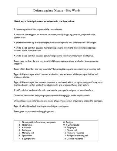 Year 1 Worksheet Word Immune System Key Words Worksheet By Harwooda  Teaching  Decimal Worksheets For 4th Grade Word with Fingerprint Patterns Worksheet Immune System Key Words Worksheet By Harwooda  Teaching Resources  Tes Simple Compound And Complex Sentences Worksheet Pdf