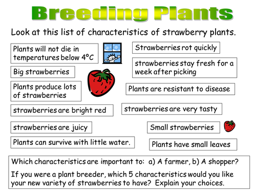 Plant reproduction and selective breeding by KatieBall ...