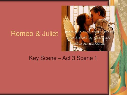 Romeo & Juliet Act 3 Sc 1 (Death of Mercutio)