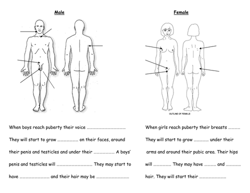 Differentiated puberty body changes handouts by fairykitty