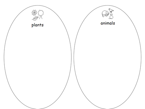 Sort plants and animals by gboorman - Teaching Resources - TES