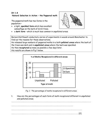 Peppered Moth: Data Analysis | Teaching Resources