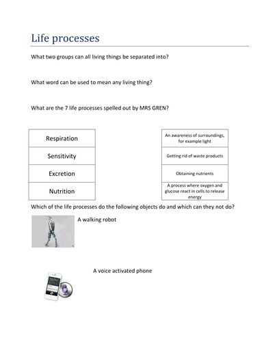 Life Processes by bevevans22 - Teaching Resources - TES