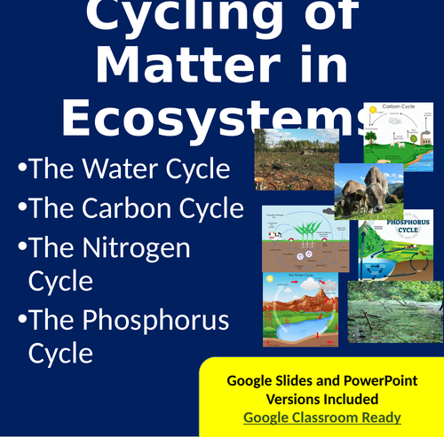 Worksheets Cycles Of Matter Worksheet cycling of matter in ecosystems powerpoint lesson notes and activity package by teachwithfergy teaching resources tes