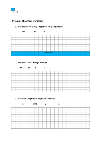 worksheet for pyramids of number and biomass
