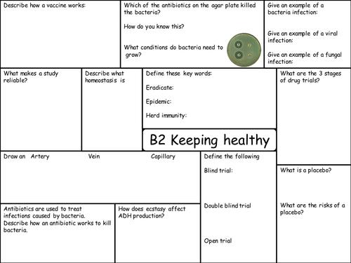 OCR 21C B2 Revision Sheets