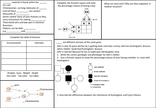 OCR 21C B1 Revision Sheets