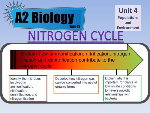 Nitrogen Cycle lesson for AS Biology AQA Unit 4