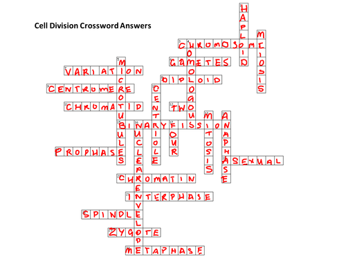 Cell Division Crossword by Bigarthur Teaching Resources Tes – Cell Division Worksheet