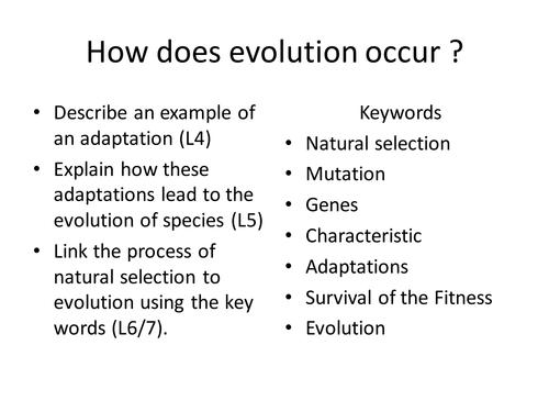 Flannimal Natural selection activity by leandbill Teaching – Natural Selection Worksheets