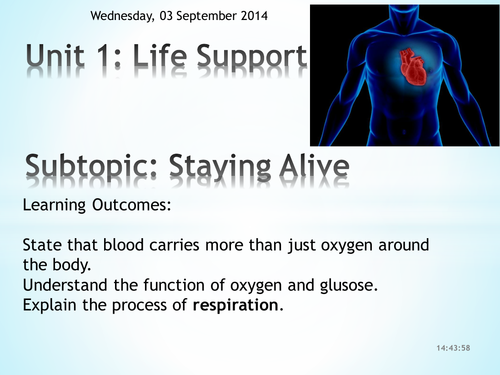 Year 8 Biology Staying Alive