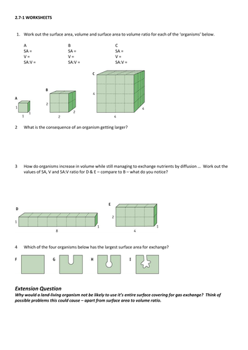 Size and Surface Area - Ficks Law - Diffusion