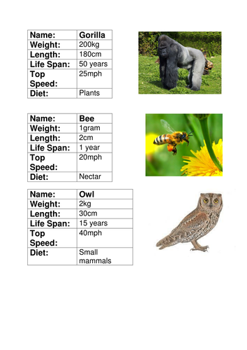 animal fact file cards by joelroutledge teaching resources tes