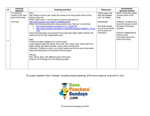 Parts Of The Body Lesson Plan And Worksheets By Saveteacherssundays
