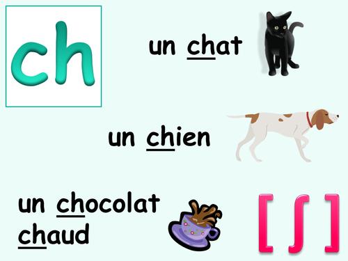 French pronunciation display